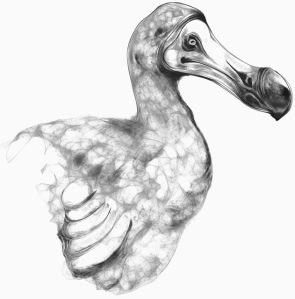 Harmony Dodo by Phineas Jones http://bit.ly/1keR68i Licensed under Creative Commons Attribution Non-Comm Non-Derivs http://bit.ly/1keRiEq